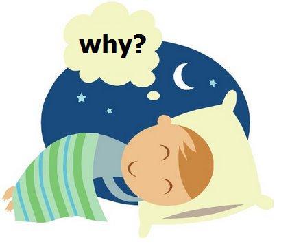 Sleep theories